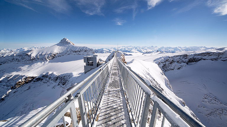 Glacier 3000 - mit Überquerung der 107 Meter langen Hängebrücke